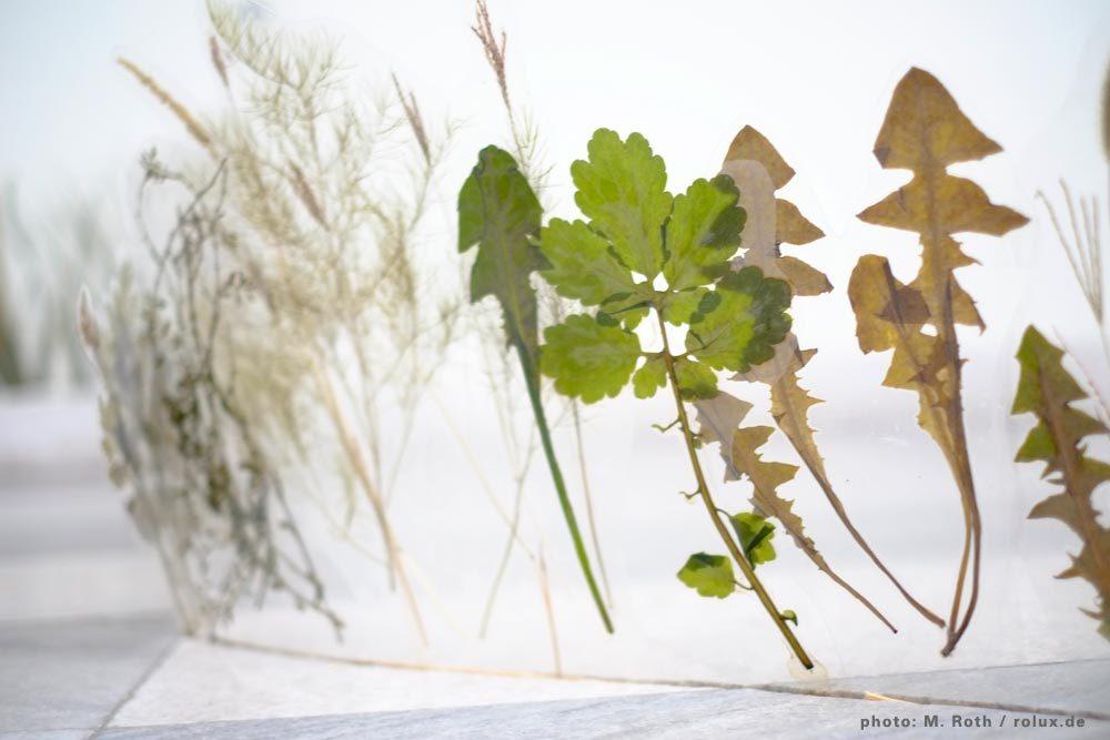 Hiding / Revealing, Lomea Annual Art Symposion, mit Ricarda Wallhäuser / Foto: M. Roth